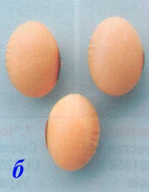 Форма семян сои: б – овальная