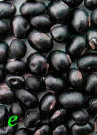 Окраска оболочки семян сои: е – черная