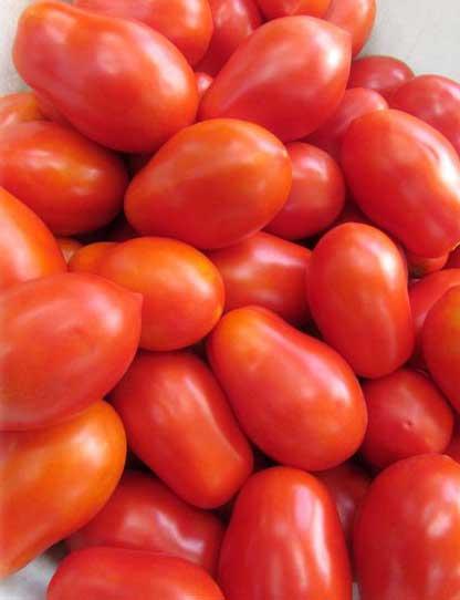 Сорт томата Кимириец